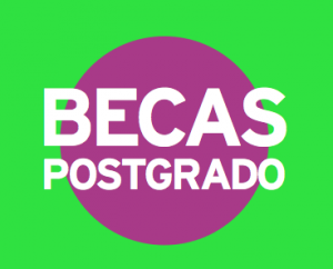 bECAS_postgrado2013