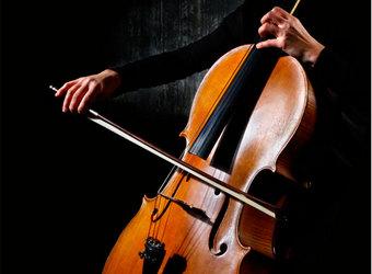 Séptimo Concurso Cidade de Vigo. Violín, viola, violoncello y contrabajo