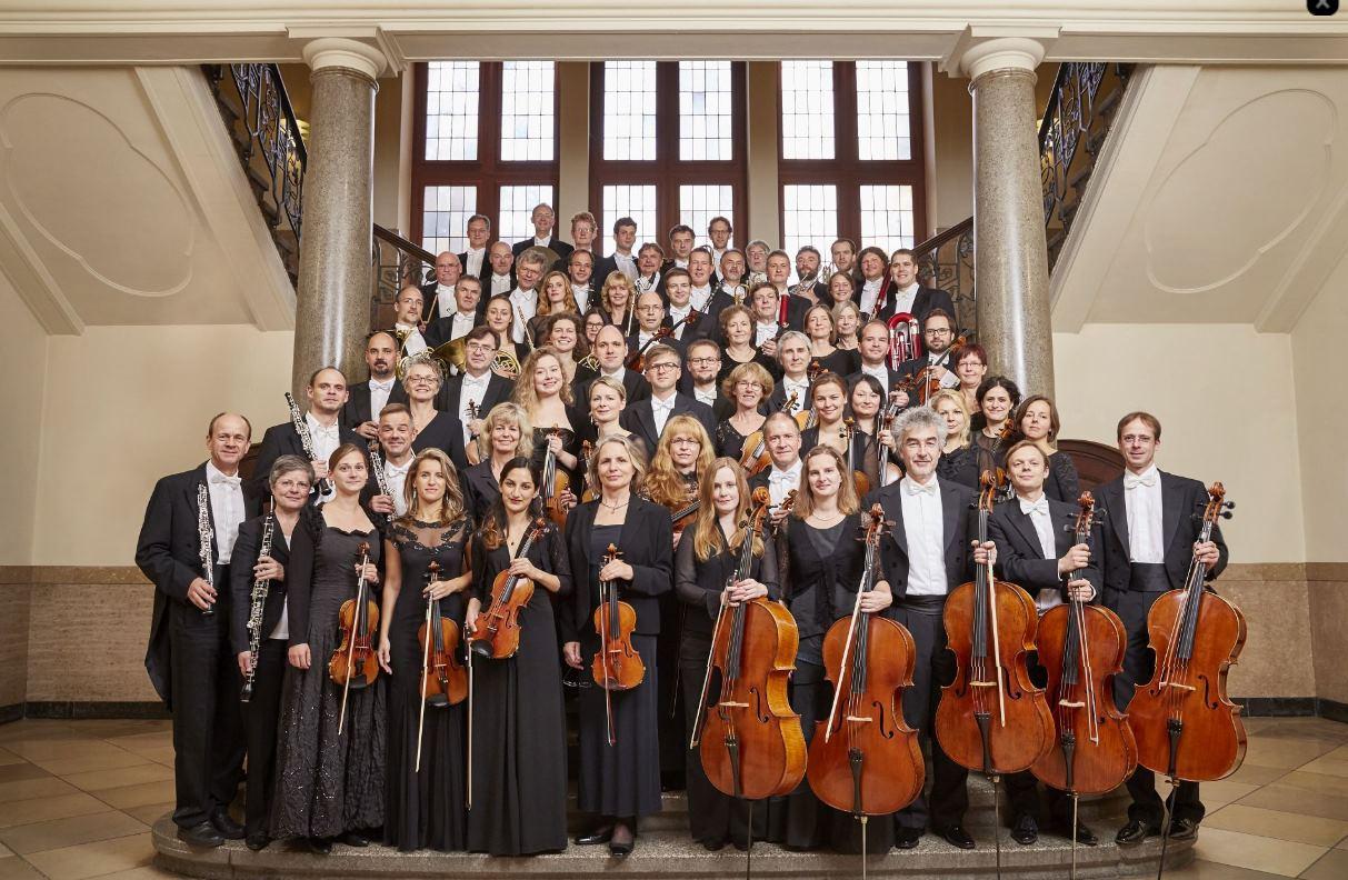 Plaza de violín  tutti 100% en Filarmónica de Jena (Alemania)
